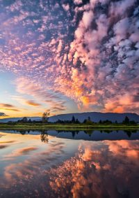 Cielo e nuvole rosa